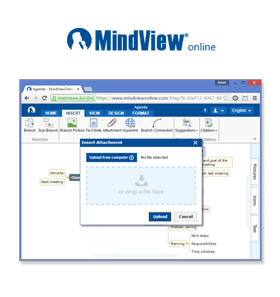MindView